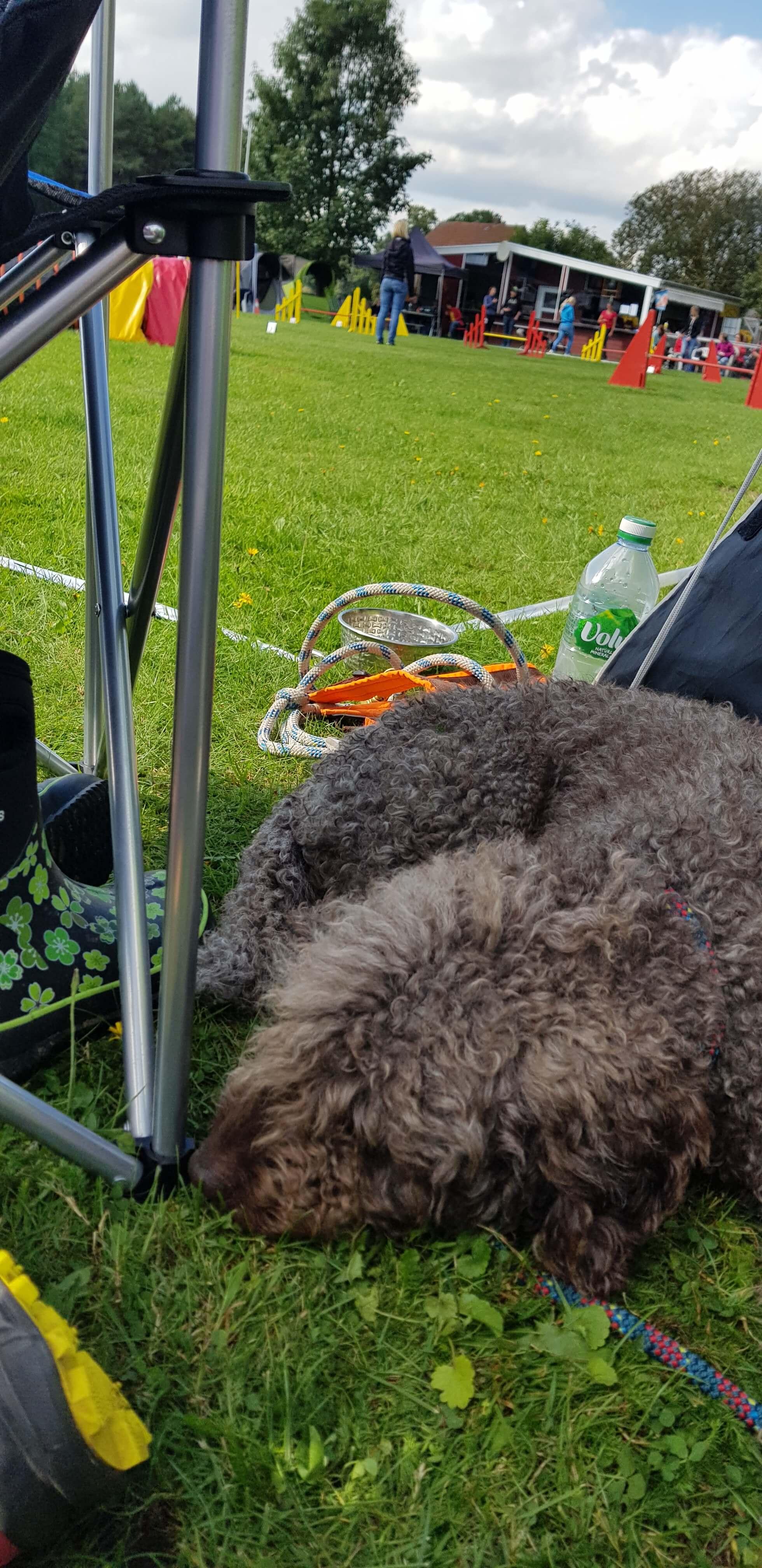 Am Parcours relaxen