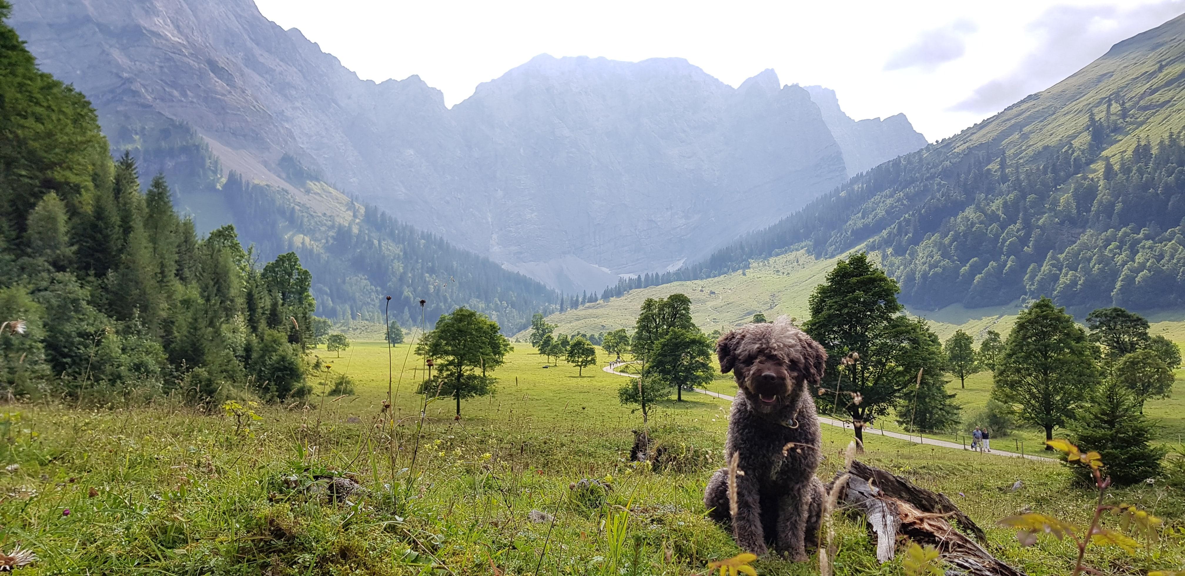 Mío in Eng, Karwendelgebirge