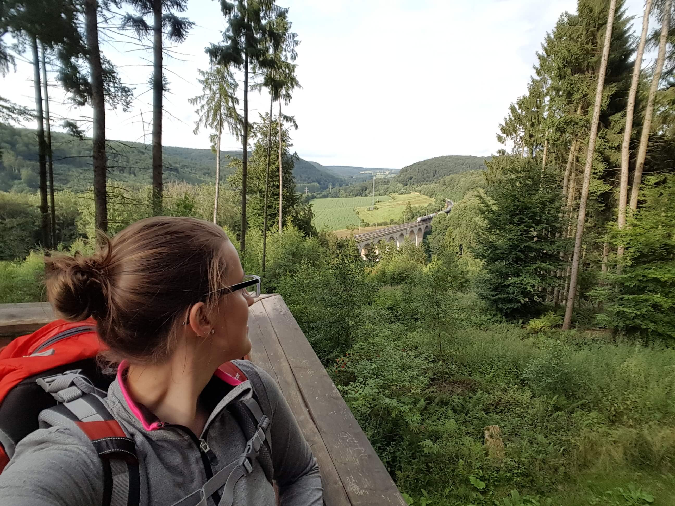 Panoramablick auf den kleinen Viadukt