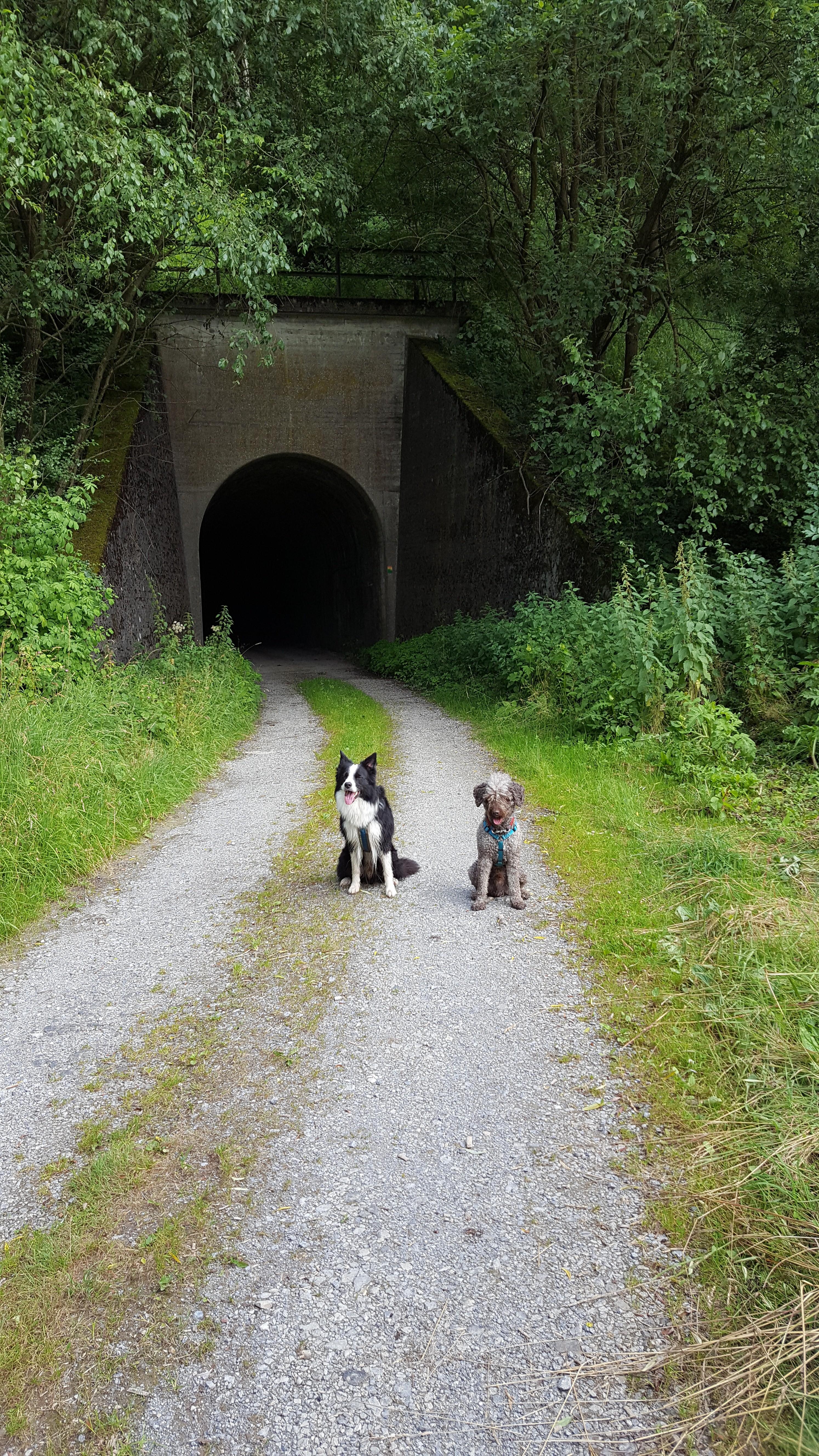 Vorm Tunnel