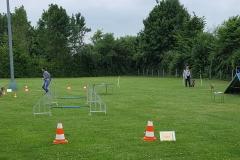 Imke mit Nu und Daniela mit Eddie beim 2er-Team-Lauf