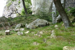 Überall liegen kleine Felsen rum.