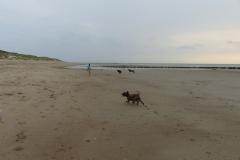 rennen am Strand